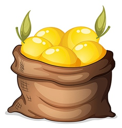 A sack of lemon vector