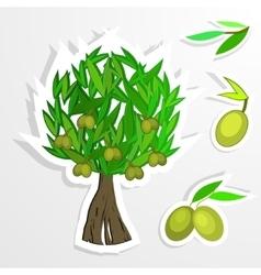 tree on paper Olive oil olive tree vector image
