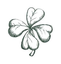 clover lucky leaf vector image