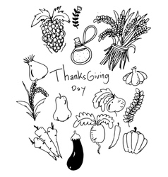 Thanksgiving vegetable in doodle vector