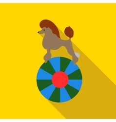 Circus poodle on the ball icon flat style vector