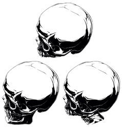 Detailed black and white skull tattoo set vector