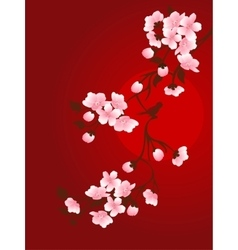 branch of cherry and sun vector image