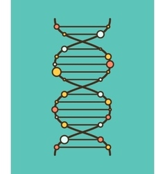 Dna schematic icon vector