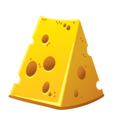 Cheese in detail vector