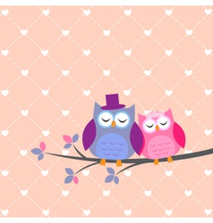 Couple owls in love vector image vector image