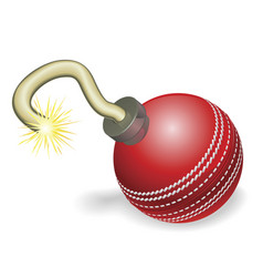 Cricket ball bomb concept vector