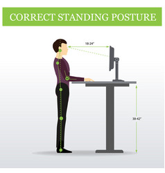 ergonomic correct standing posture and height vector image