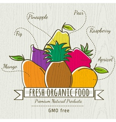 Set of organic fruits vector