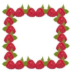 Frame raspberries vector