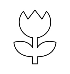 Flower settings camera isolated icon design vector