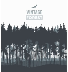 Pine forest hand drawn vector image vector image