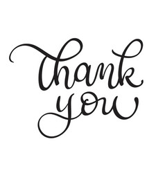 Thank you text on white background calligraphy vector