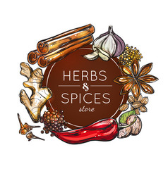 spice and herb store emblem vector image