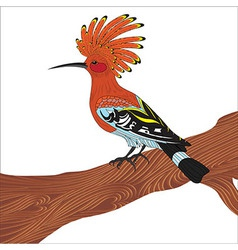 Bird hoopoe vector