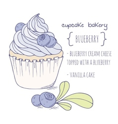Hand drawn blueberry cupcake vector