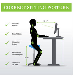 Ergonomic saddle sitting chair and height vector