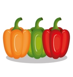 Fresh vegetable isolated icon vector