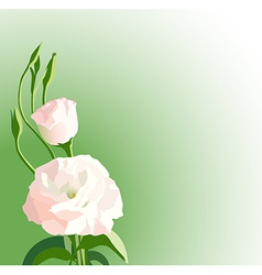 Green background with white beautiful flowers vector