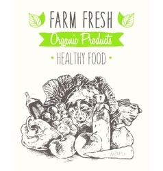 Organic product farm healthy food poster drawn vector image vector image