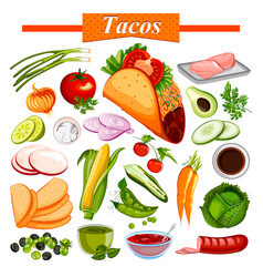 Food and spice ingredient for mexican snack tacos vector