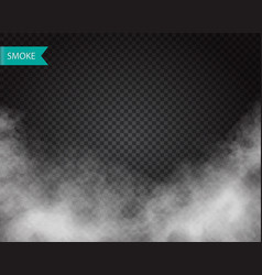 clouds or smoke on transparent background vector image