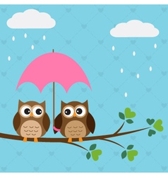 Owls couple under umbrella vector