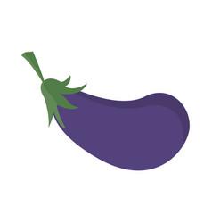 Eggplant vegetable nutrition vitamin food health vector