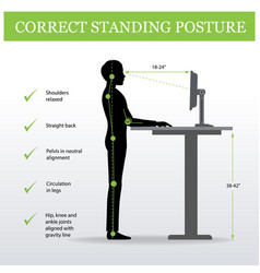 Ergonomic correct standing posture and height vector
