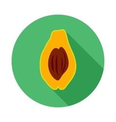 Avocado icon in flat style vector