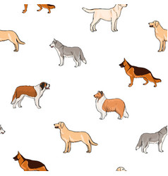 seamless pattern with dogs of different breeds vector image