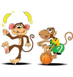 Two monkey cartoon vector image