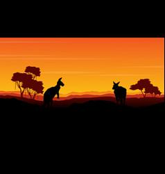 Landscape kangaroo silhouette at the sunset vector