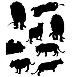 Collection of silhouettes of lions vector
