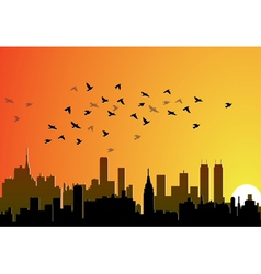 city background with flying birds vector image
