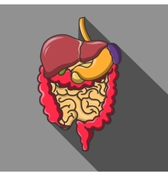 human organs icon set  EPS vector image