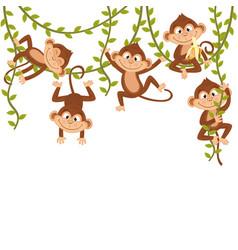 monkey on vine vector image