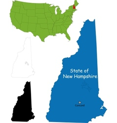 New hampshire map vector image