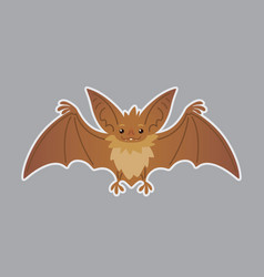 bat animal of bat-eared brown vector image vector image
