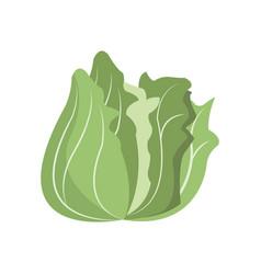 Vegetable nutrition vitamin food health vector