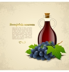 Wine bottle with a racemation of grapes vector