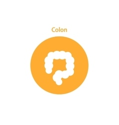 colon simple icon vector image vector image