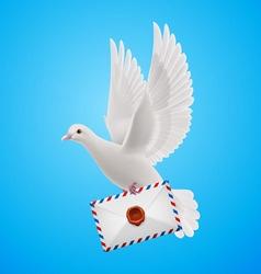 Dove white vector