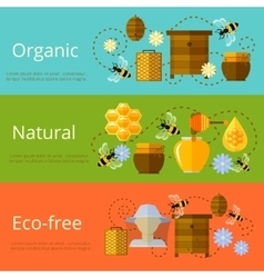 Honey and beekeeping banners vector
