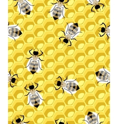 honeycomb and bee vector image