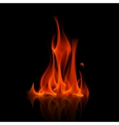 Red fire flame bonfire isolated on background vector