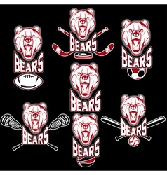 Set of bear sports labels vector