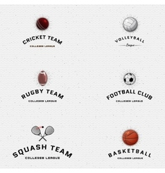Cricket volleyball football basketball squash vector