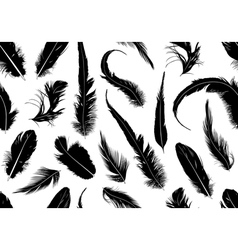 Seamless feathers vector image vector image