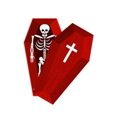 Skeleton in coffin Open casket and skull and bones vector image vector image